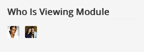 Who Is Viewing Module