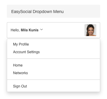 Dropdown Menu Module