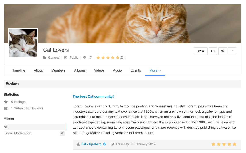 EasySocial - Group Reviews